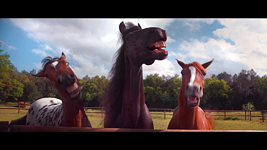 VW Trailer Assist is no laughing matter, just ask these horses