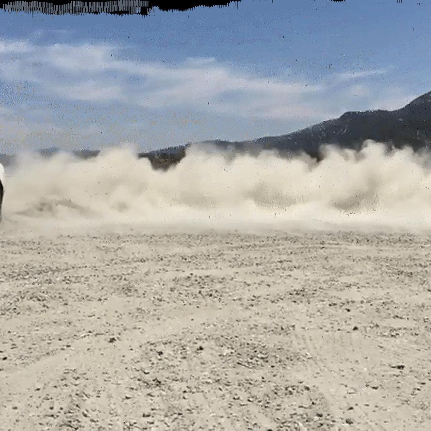 2017 Fiat 124 Spider: Sprezzatura On Wheels