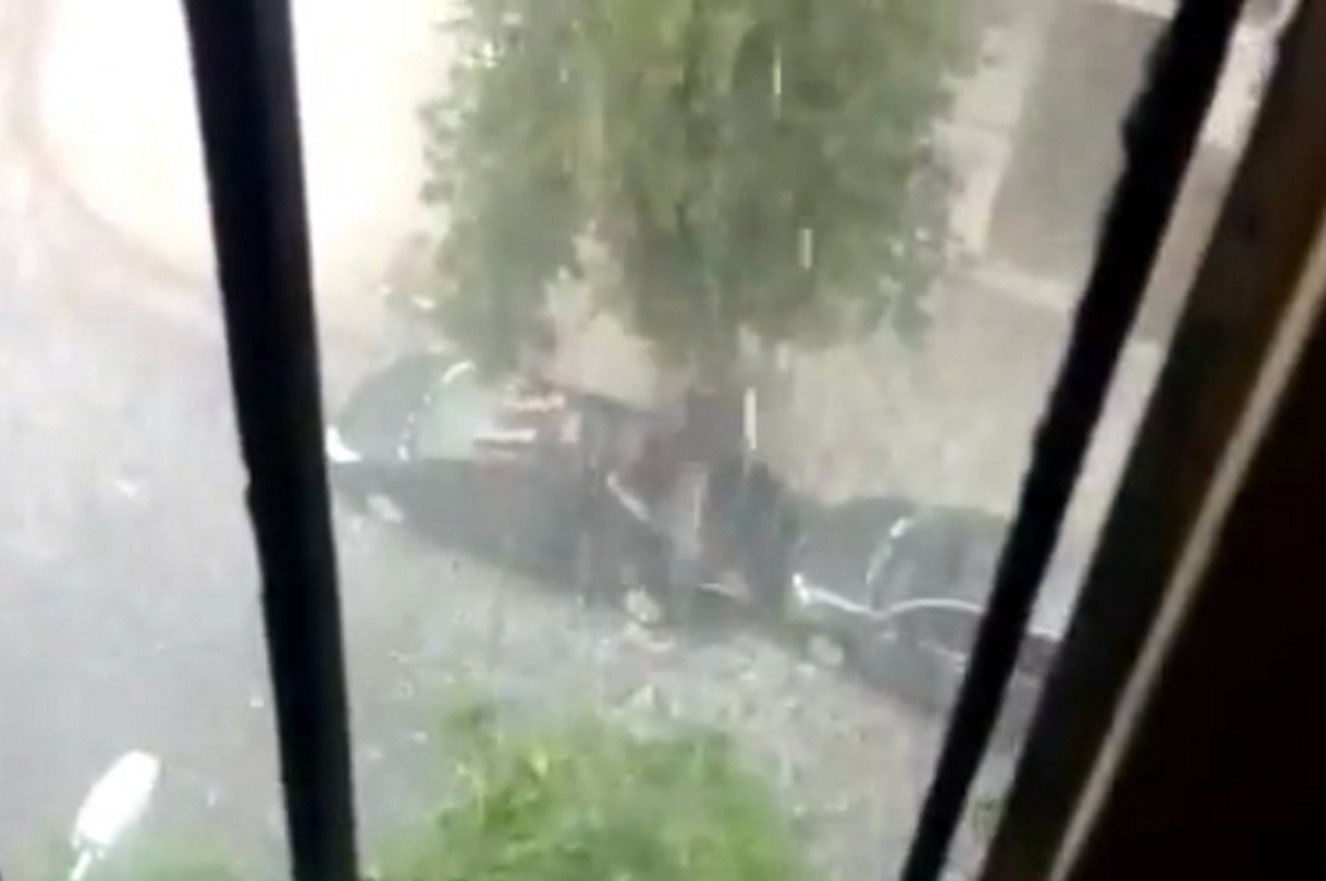 Video: Man Uses His Body To Shield Prius from Hail