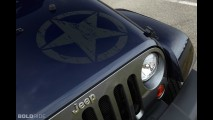 Jeep Wrangler Unlimited Freedom Edition