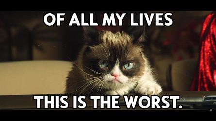 Grumpy Cat Opel Calendar: