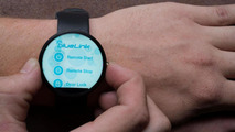 Hyundai Blue Link smartwatch app announced [video]