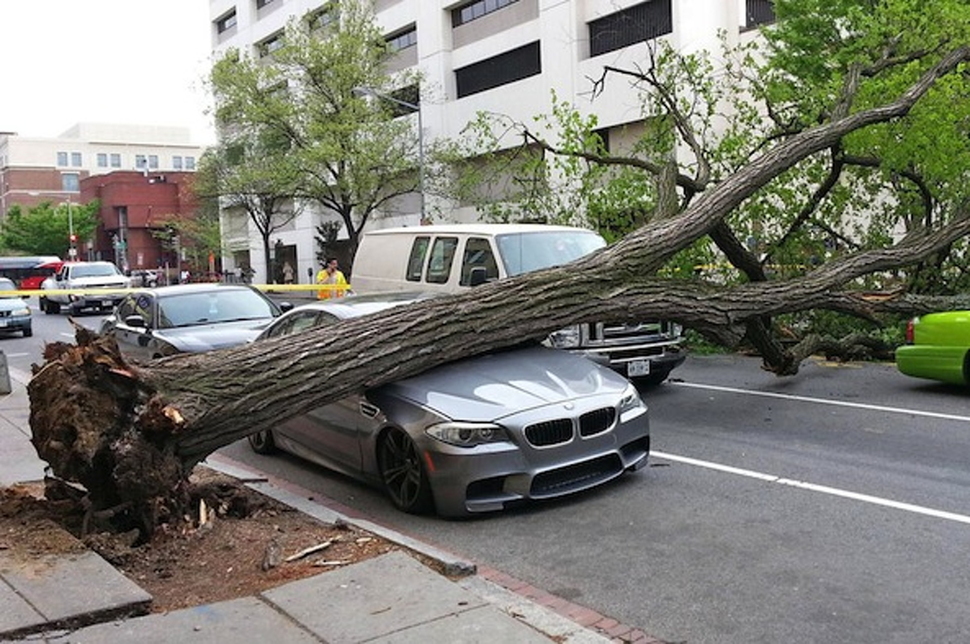 BMW M5 (F10) Crushed by a Tree