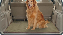 Dogs have larger carbon footprint than SUVs, says study