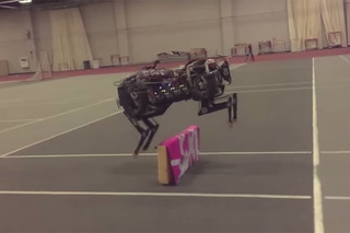 If Artificial Intelligence Scares You, This Robot Cheetah Will Give You Nightmares