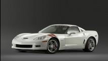 Corvette Ron Fellows ALMS GT1 Champion Z06
