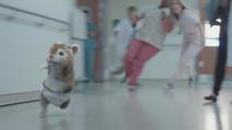 2017 Kia Soul Turbo - The Turbo Hamster Has Arrived ad