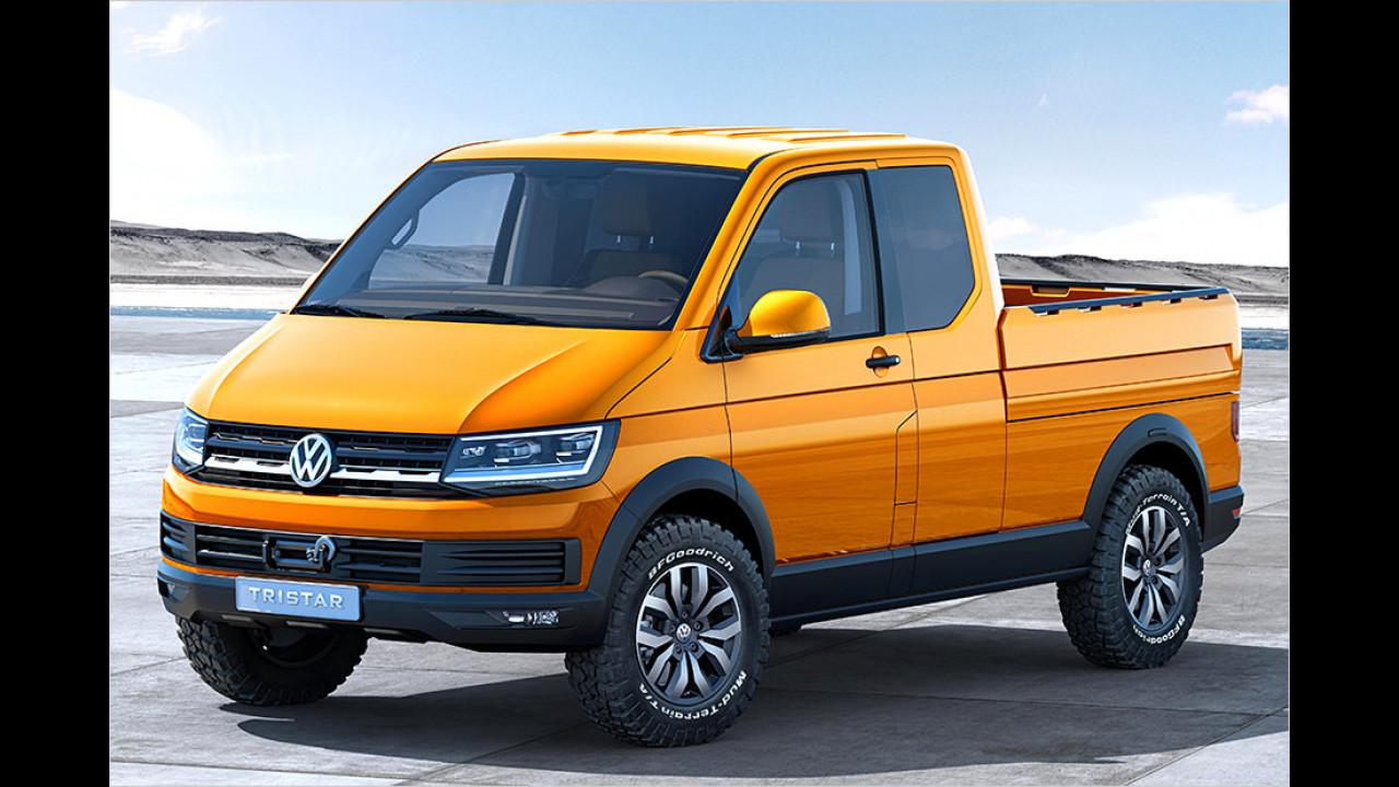 VW T6 (ab Mai)