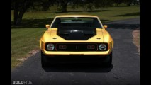 Ford Mustang Mach 1 429 Sportsroof