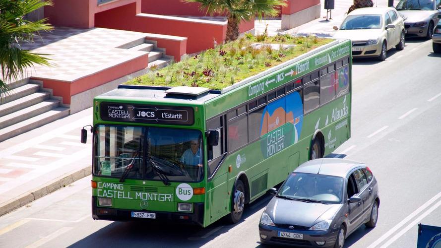 Madrid'in otobüsleri yeşillendi