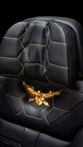 Mercedes-AMG GLS63 by Dartz