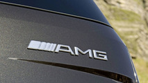 Mercedes AMG Badge