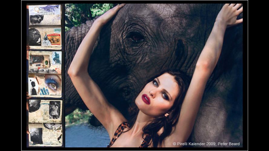 Pirelli-Kalender: Schönheiten unter der Sonne Afrikas