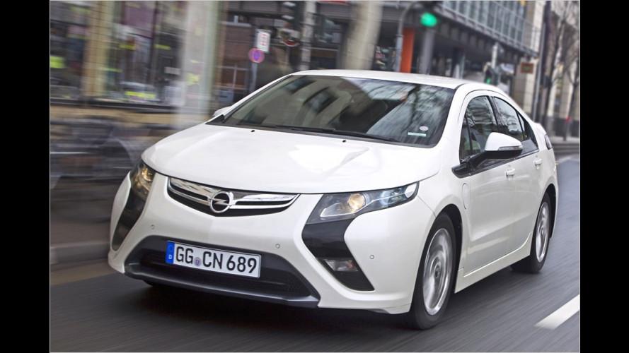 Ampera und Volt sind ,Auto des Jahres 2012