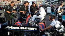 Fernando Alonso, McLaren on the grid.