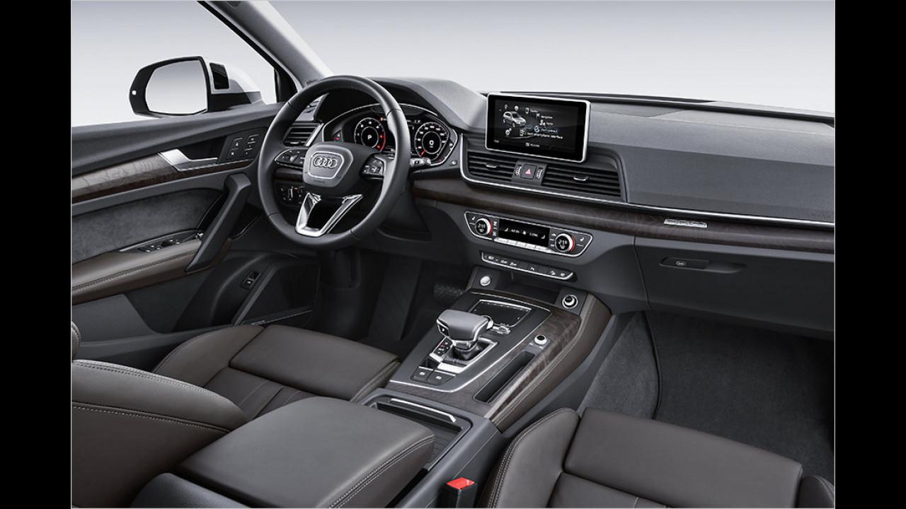 Cockpit: Auch mit Holzleisten