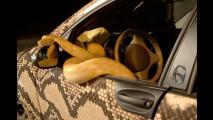 Schlangen-Smart