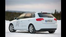 Erdgas im Audi A3 TCNG