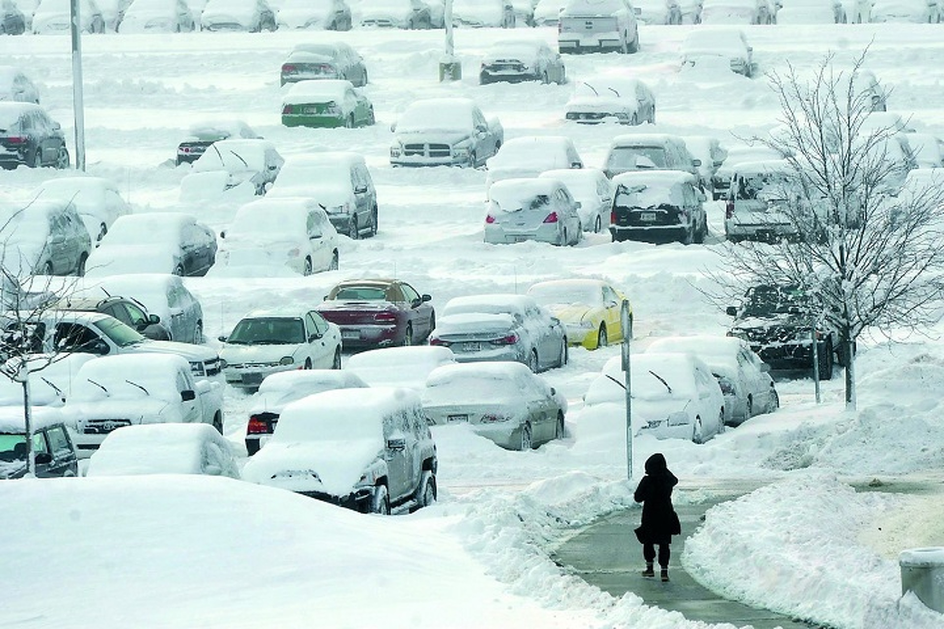 Before the Winter Blizzards, Learn How to Drive in Snow