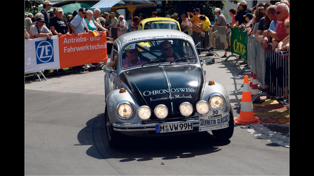 Salzburg-Käfer
