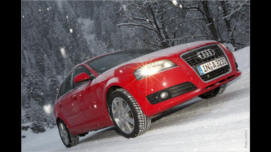 Autos vor Kälte schützen
