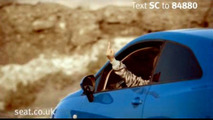 SEAT Ibiza SC Cinema Advert Shows a Bird
