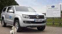 Volkswagen paw-wheel-drive