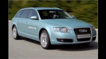 Sauber-Diesel von Audi