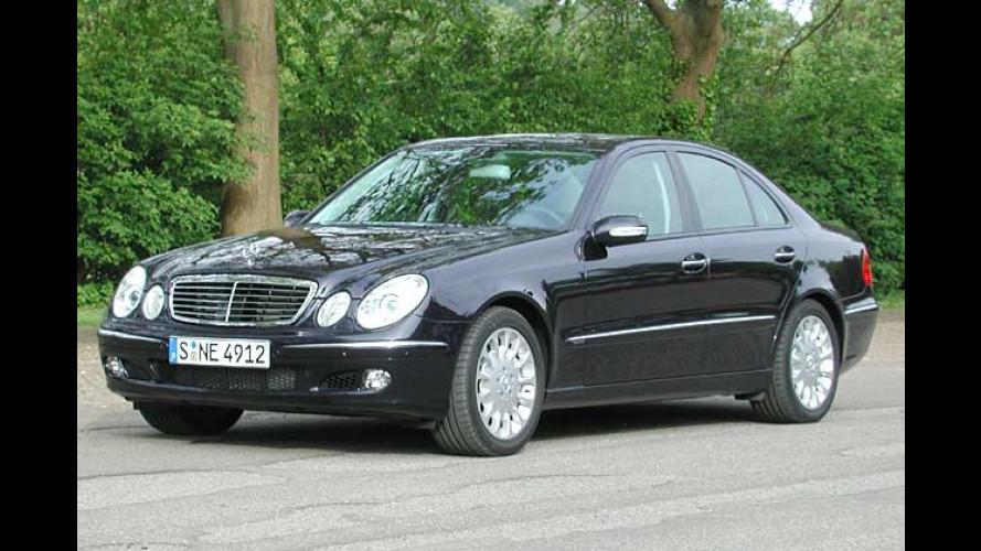 Mercedes E 420 CDI mit neuem V8: Bärenkraft im Edelpelz