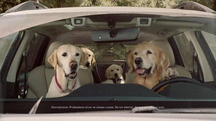 Forget the Ascent, Watch Subaru's New Ads For the Cute Dogs