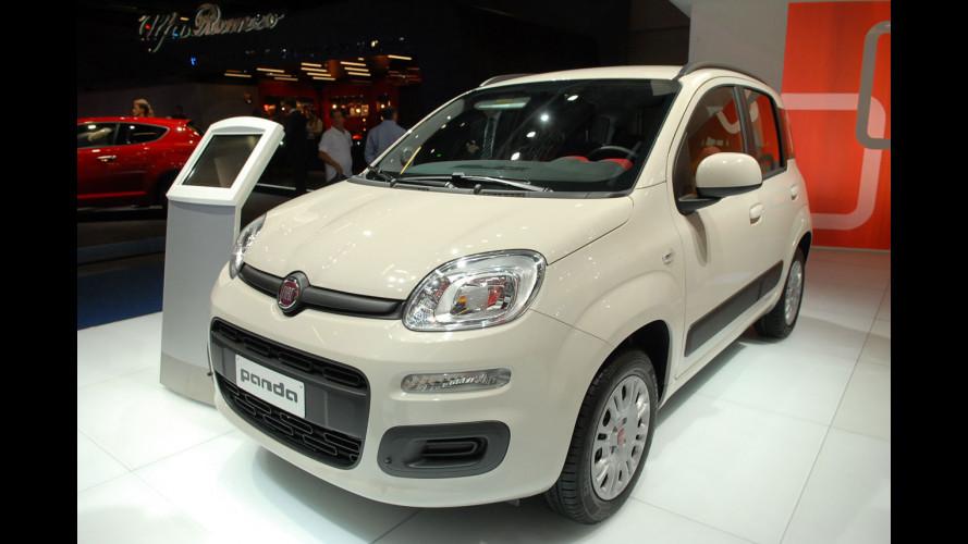 La nuova Fiat Panda l'hanno