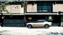 Nissan IDx Freeflow 20.11.2013