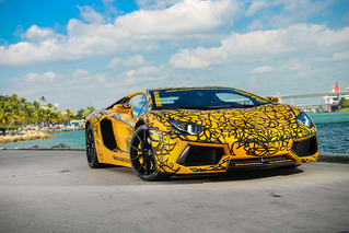 Painted Supercars Star at Miami's Art Basel